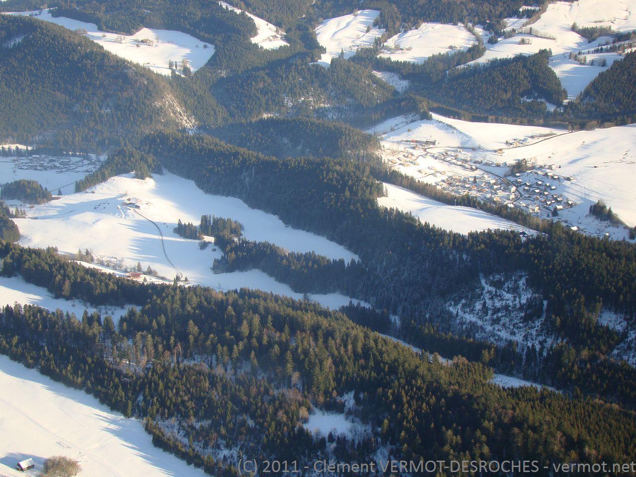 Les sapins givrés de l'hiver du Doubs